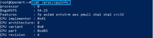 ZIDOO terminal command CPU info